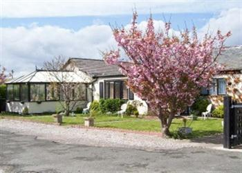 Beach Bungalow, Conwy