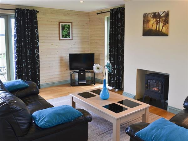 Higher Shorston Lakes and Lodges - Bluebell Lodge, Devon