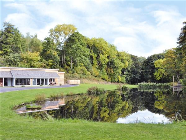 Nant y Gain Fishing Lodges - Badger Lodge, Clwyd