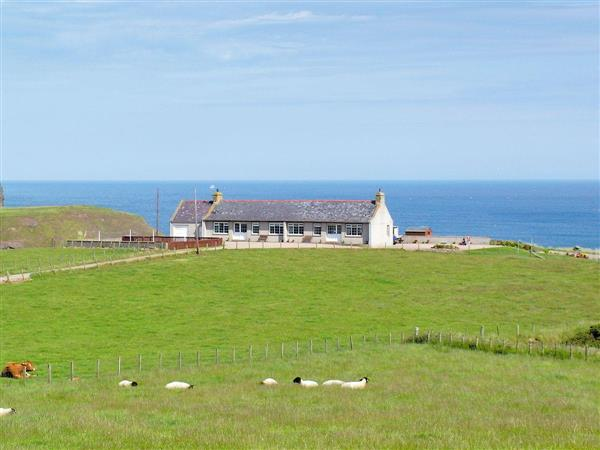Nethermill Cottages - Mill Shore Cottage, Aberdeenshire