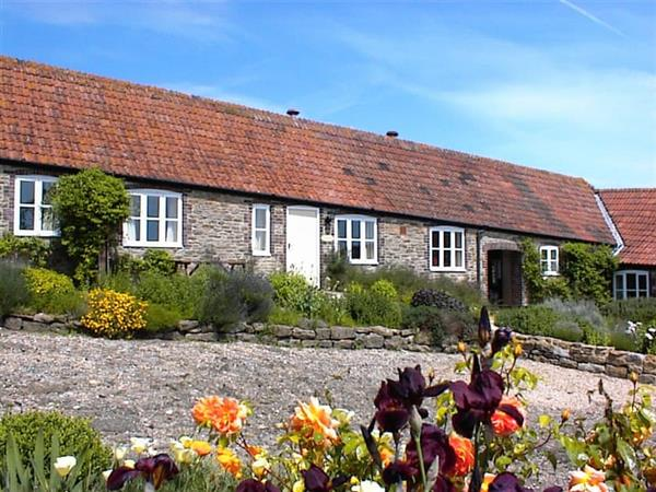 Rudge Farm Cottages - Shepherds Cottage, Dorset