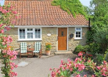 Terrington Holiday Cottages - Silverstones, North Yorkshire