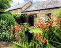 Relax at Wagtail Cottage; ; East Taphouse