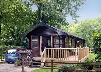 Explore the countryside at Lime Tree Park