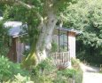 Rockpool Lodges in Totnes - Devon