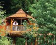 Sherwood Forest Lodges in Mansfield - Nottinghamshire