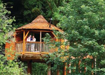 Golden Oak Hideaway, Mansfield, Sherwood Forest, Nr Edwinstowe with hot tub