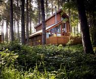 Blackwood Forest Lodges in Micheldever, Hampshire