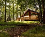 Thorpe Lodges in Thetford Forest, Norfolk
