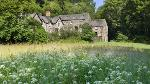 Cotehele Mill in Cornwall