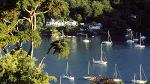 Dart Estuary to Brixham in Devon
