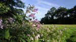Parke in Devon